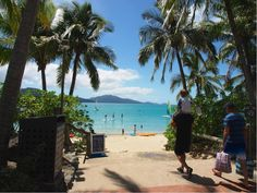 Head to Catseye Beach and make use of the complimentary, non-motorised watersports equipment. Last Holiday, Hamilton Island, Luxury Accommodation, Water Sports, Things To Do, Holidays, Beach, Outdoor Decor, Kids