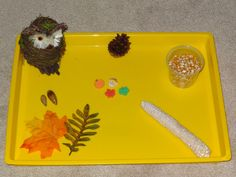 Fall activities for kids: What is missing? Fall activities for kids: What is missing? An activity that supports memory and attention skills Fall Activities For Toddlers, Fall Preschool, Science Activities, What Is Change, What Is Miss, Autumn Theme, Autumn Inspiration, Back To School, Curiosity