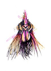 Illustration - thebigfatpeacock