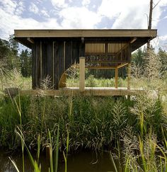 Here's an interesting tea house design by Czech architects A1 Architects. This raised house plan sits up on stilts, at the edge of a large, dark lake surrounded by a pine forest, providing a naturally beautiful backdrop for this humble home. This organic architecture is one with the garden, which is visible through the open slatted walls that slide open to reveal new views at every turn.