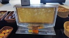 Originelle Honigtankstelle Filling Station, Honey, Treats, Diy, Cooking