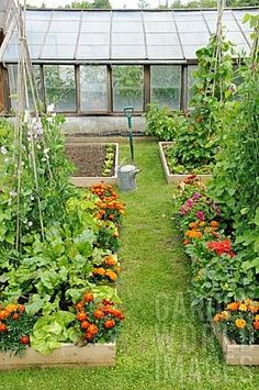POTAGER STYLE SMALL SUMMER GARDEN WITH MIXED VEGETABLE AND FLOWER RAISED BEDS by Gary Smith on World Garden Images.