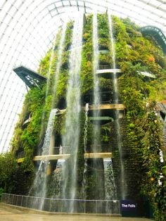 Photos singapore 39 s supertrees solar powered vertical for Indoor gardening singapore