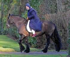 the Queen & it looks like she is on a Dales or Fell pony. Gorgeous pony no matter what breed! Her Majesty The Queen, Hm The Queen, Riding Hats, Horse Riding, Riding Jacket, All The Pretty Horses, Beautiful Horses, Fell Pony, Isabel Ii