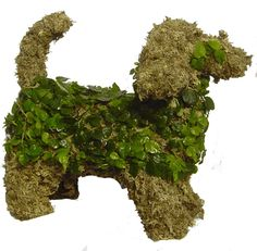 "Topiary Dachshund  Planted - 15"" long"