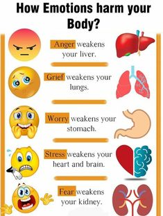 your mind with positivity and eliminate stress and anxiety How Emotions harm your body. how to reprogram your thoughts.How Emotions harm your body. how to reprogram your thoughts. Health Facts, Health And Nutrition, Health Fitness, Health Exercise, Health And Wellbeing, Health Benefits, Natural Health Remedies, Stress And Anxiety, Healthy Tips