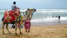 Orissa tribal tours helps in experiencing the tourists with ethnology-cultural identity & enthrall them with sheer simplicity by availing tribal and tours packages at a legitimate budget.
