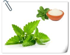 #Stevia Extract 1, Latin Name:  #Steviare #baudiana  2, Part used:  Leaf 3, Active #ingredients: Steviosides ;Rebaudioside-A; (White powder)  4, Specification:  Steviosides 80-98%;                              Rebaudioside-A  40%-98% 5, #Certificates:  #ISO9001 / #Halal / #Kosher / #HACCP  http://apitechina.com/