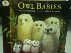 This afternoon we also read some information books about owls and then tomorrow we will make a Venn Diagram comparing bats and owls. The kids are always surprised to learn that bats aren't birds and they don't have feathers! I'll also be encouraging the kids to try out some informational writing themselves this week during writing workshop or while they our at our writing center during literacy station time (they have been mostly sticking to narrative writing so far). Drawing a bat or owl…