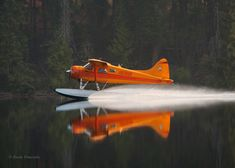 Beaver N67689. S/N 1242.