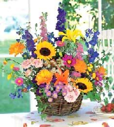 This site has a list of seasonal flowers. Seasonal flowers tend to be a better bargain than others.