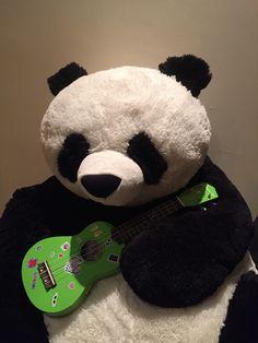 Panda playing a ukulele