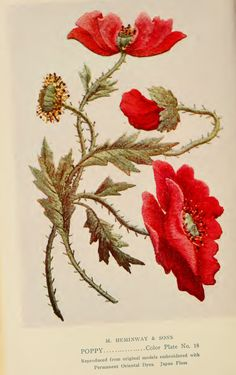 """Poppy Embroidery from """"A Treatise on Embroidery"""" published in 1907."""