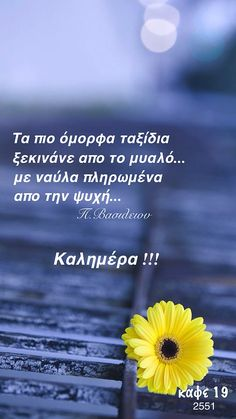 Good Morning Coffee, Good Morning Good Night, Greek Quotes, Movie Quotes, Wisdom, Words, Travelling, Photos, Beautiful
