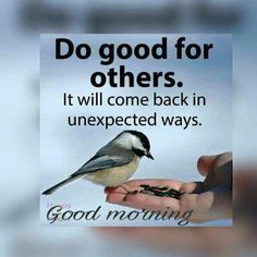 Good Morning Cards, Happy Morning, Morning News, Good Morning Messages, Good Morning Good Night, Good Morning Wishes, Morning Images, Good Morning Quotes, First Day Of Work