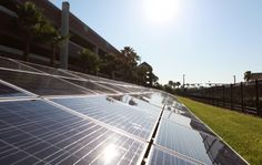 Taking after the Development in Alternative Energy Sector of Tampa