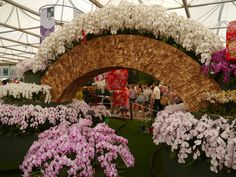 https://flic.kr/p/c6hnad | Chelsea Flower Show, 26th May 2012