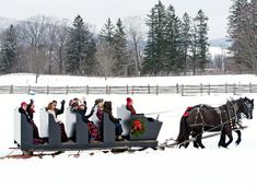 A merry group of Woodstock visitors enjoy a sleigh ride across the fields at Billings Farm, courtesy of Percheron mares Lynne and Sue, one of three draft-horse teams on the property. Christmas In America, Woodstock Vermont, Horse Books, Saint Nicholas, Farm Life, New England, Manchester, Places To Visit, Horses