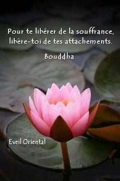 """""""Pour te libérer de la souffrance, libère-toi de tes attachements."""" Bouddha #citations"""