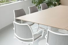 STUA. The new office with Gas swivel chairs. GAS: www.stua.com/eng/coleccion/gas-swivel.html Design Jesus gasca