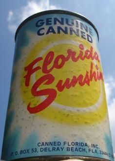 ☄ Florida Girl, Visit Florida, Florida Living, Old Florida, Vintage Florida, State Of Florida, Florida Vacation, Florida Beaches, Florida Sunshine
