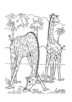 baby jungle animals coloring pages free printable coloring pages for kids zoo animals monkey