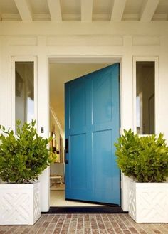 big bad bright door in Creamy Entry with muted red brick and boxwood planters - San Francisco home by Palmer Weiss  in Traditional Home