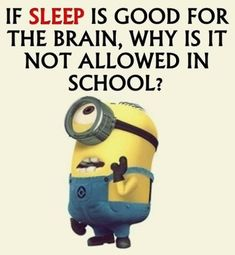 """These """"Top 20 LOL SO True Memes Minions Quotes"""" are very funny and full hilarious.If you want to laugh then read these """"Top 20 LOL SO True Memes Minions Quotes"""" Humor Minion, Funny Minion Memes, Funny School Jokes, Crazy Funny Memes, Minions Quotes, Really Funny Memes, School Humor, Funny Facts, Funny Jokes"""