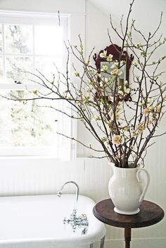 cut flowering spring branches