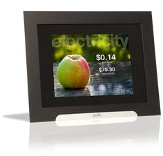 Ceiva Energy Homeview and EntryWay smart meter displays