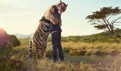 Amizade é quase tudo, quem a tem possui um dos maiores tesouros do mundo. Esse sentimento é sem dúvida um dos mais resistentes ao tempo, é tão forte que nem