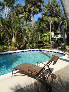 12 best 12 palms recovery center images on pinterest palm trees