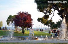 ● The surrounding area of the White Tower at the center of Thessaloniki is a vibrant, full of energy stress free zone!   ● Η περιοχή τριγύρω από τον Λευκό Πύργο σφύζει από ζωή και ενέργεια, ιδιαίτερα κατά τους καλοκαιρινούς μήνες!   ● #thessaloniki #white #tower #museum #greece #macedonia #travel #hellas #grecia #girechenland #grece #grcka #travel #history #museums #lefkos #pyrgos #λευκος #πυργος #θεσσαλονικη #ελλαδα #ελλάς