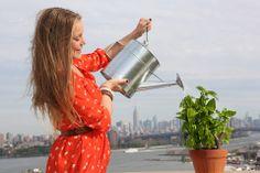 Parrot Flower Power: незаменимый помощник дома и на грядке! | Новости из мира Apple, свежие новости hi-tech, обзоры новинок
