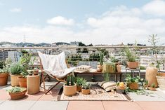 Cork, shades of white and plants that love hot dry places make for an organic modern rooftop garden.