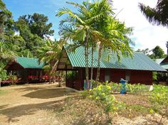 Anaula Nature Resort (Aurora, Suriname) - Lodge