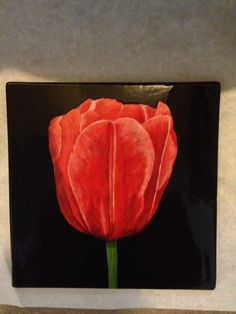 Painted pottery tulip