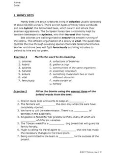 Vocabulary in Context (Set A) from Pat's Worksheets on TeachersNotebook.com (20 pages)