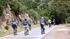 End of April ideal for mountain biking at Poros Islands. Can you smell the pine trees? Yoga Holidays, Beach Walk, Athens, Mountain Biking, Islands, Pine, Street View, Pine Tree, Athens Greece