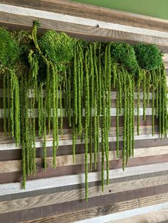 Nice Vertical Garden Wall Decor Ideas Look Beautiful - One of the solutions, when you are faced with the challenge of small space gardening, is vertical gardening. You have to think of growing plants and f. Jardin Vertical Diy, Vertical Garden Design, Plant Wall, Plant Decor, Moss Wall Art, Vertical Vegetable Gardens, Decoration Plante, Deco Nature, Garden Windows