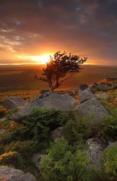 Sunset - Dartmoor by @Gking_photo, via Flickr
