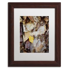 Paper Birch Abstract by Kurt Shaffer Matted Framed Photographic Print