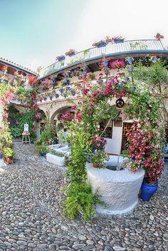 Patio de la calle San Basilio, 50 .- Patio de arquitectura antigua, pertenece a la Asociación de Amigos de los Patios Cordobeses.
