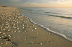 Manasota Key, FL.....Love this place