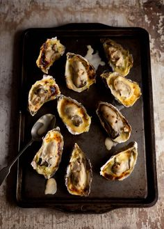 Oysters gratin with cream and wine,on buttery leeks #recipes #food #oysters