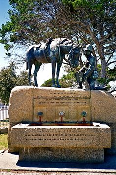 The Horse Memorial in Port Elizabeth in a statue that is dedicated to all the horses that died in the second South African War from 1899 - 1902 Port Elizabeth South Africa, Out Of Africa, The Beautiful Country, My Land, African History, Countries Of The World, Continents, Les Oeuvres, Wonders Of The World
