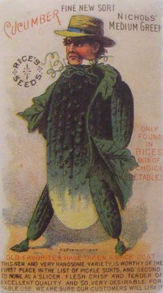 Mr Cucumber, a fine new sort - amusing vintage seed advertisement