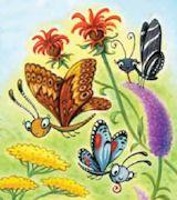 Butterfly Debbie Palen June July 2011 Ranger Rick  butterfly garden ideas