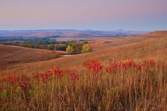 Flint Hills & Prairies ~ The Seasons Photography Photos, Landscape Photography, Nature Photography, Flint Hills, Park Trails, North America, National Parks, Beautiful Places, Places To Visit