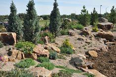 Birth of a new rock garden at the Gardens at Spring Creek | Denver Botanic Gardens